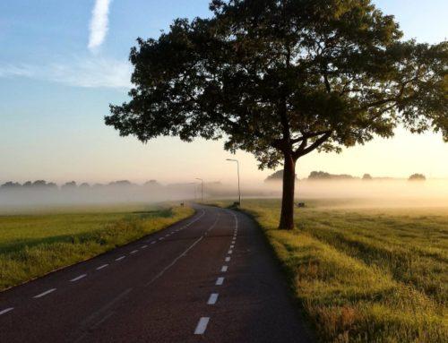 Codice della strada: novità 2019