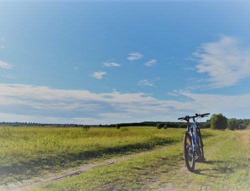 Facciamo un giro in bici?